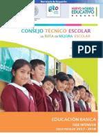 Fase Intensiva CTE 2017-2018 dommy.pdf