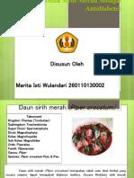 POH Toksisitas Ekstrak Daun Sirih Merah Pada Tikus Putih Penderita Diabetes Melitus)_ Marita Isti Wulandari (260110130002)