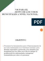 Presentacion Lineamientos Para El Funcionamiento de Los Cosos Municipales a Nivel Nacional.