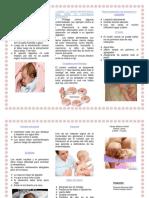 63488739 Triptico Cuidados Del Recien Nacido