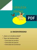 Naturaleza Fragil 4
