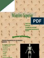 25925341-Miembro-Superior.ppt