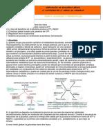 Apuntes Tema 4- Glicolisis y Fermentación