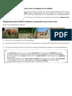 Materialunidad1 Clase Animales