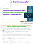 Visão Geral Do Sistema Cardiovascular