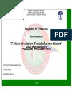 Programa de Formacion