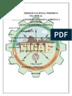 Informe 7 Curvas Adimensionales
