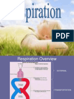 respiration-091101010608-phpapp01.ppt
