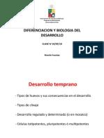 Clivaje_Gastrulacion.pdf
