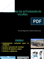 Aproximación_Calendario Vicuñero en Función a la Normatividad Vigentes.pptx