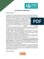 Vela incident 002.pdf