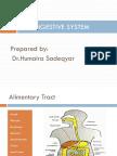 Digestive System-Presentation.pdf