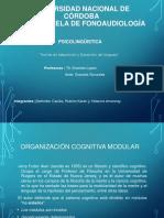 Organización Cognitiva Modular2 (1) (1)