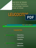 Clase de Leucocitos