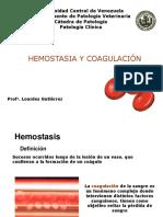 Hemostasia y coagulacion.pdf