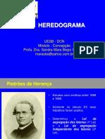 Heredograma Medicina Env 19042017