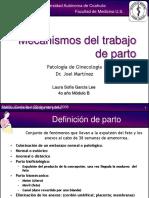 mecanismosdeltrabajodeparto-090419000827-phpapp01