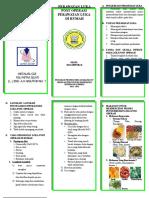 272524812 Leaflet Perawatan Luka Post Op