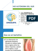 exposicion de salud de la mujer cervitis.ppt