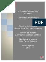 Intrumentos de competencia pdf.pdf