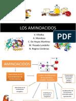 Los Aminoacidos (1)