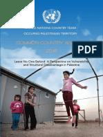 CCA Report En