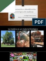 Charla Identificación de Maderas.pdf