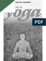 Perfeziono Lo Yoga di Andre Van Lysebeth 1969 Pg 277