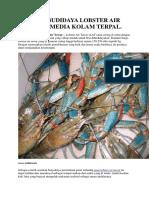 CARA BUDIDAYA LOBSTER AIR TAWAR MEDIA KOLAM TERPAL..docx