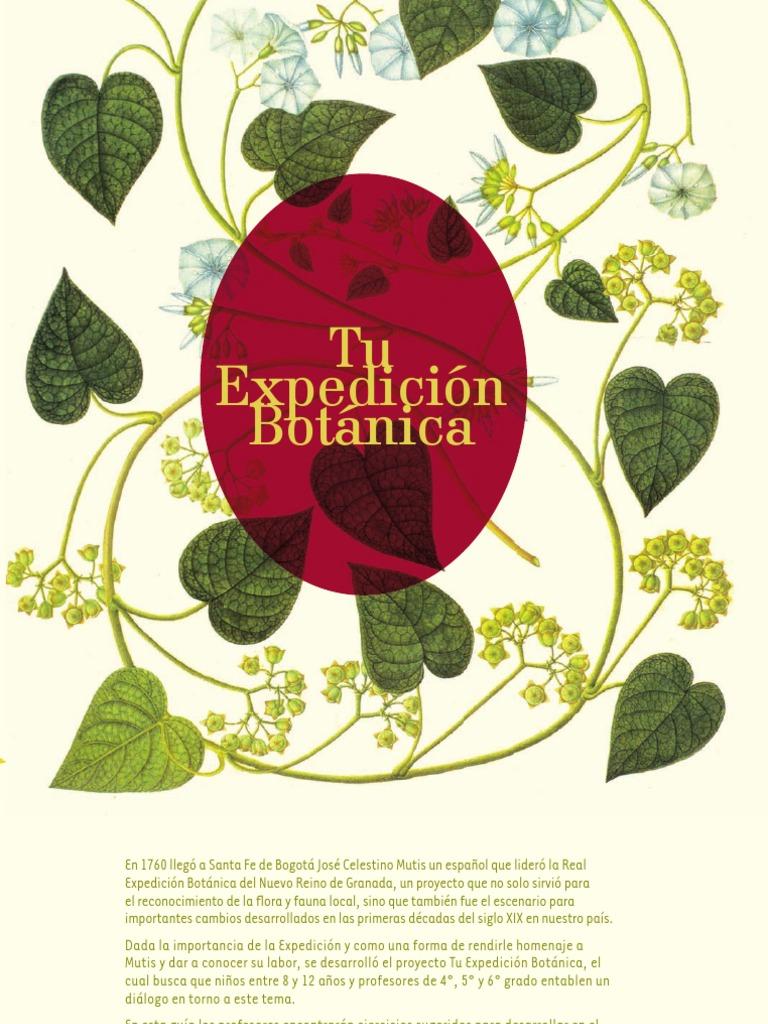 Expedicion botanica for Botanica general pdf