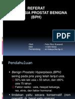 Referat Bph Dr Eko