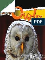 Julie K. Lundgren Owls.pdf