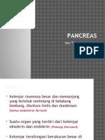 Review Pancreas