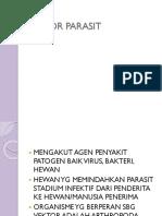 k6 - Vektor Parasit