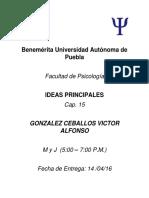 Ideas Principales Cap. 15