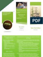manual_de_protocolo_y_guia_de_bioseguridad_triptico.pdf