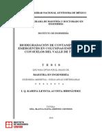 Remocion de contaminantes emergentes con suelos.pdf