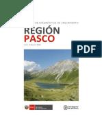 Reporte Pasco PXP 221116 ALTA.pdf