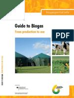 Guide Biogas