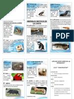 336854268-Triptico-Animales-Nativos-y-Exoticos-Del-Peru.docx
