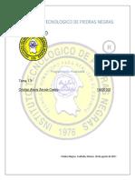 Documento X