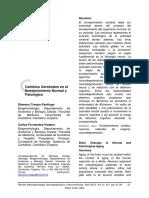 cambios cerebrales envejecimiento normal y patologico.pdf