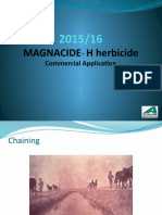 Mag H Chile Presentation0104