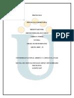Actividad Individual Protocolo Empresarial Odeth Eneida Blanco