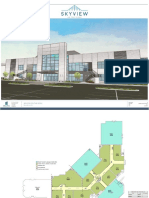 Skyview Renderings for Packet