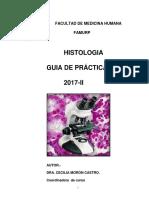 Guia de Practicas 2017-II