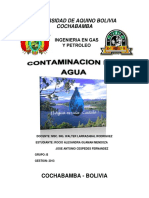 274616190-Informe-Sobre-La-Contaminacion-Del-Agua.docx