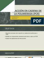 """Reacciã""""n en Cadena de La Polimerasa Final[1]"""