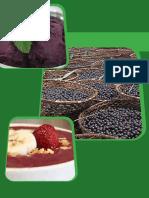 Cap1 Acai Acre Guias Para Gerenciamento Riscos Sanitarios Em Alimentos