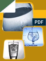 Cap2 Agua Adicionada Sais Ceara Guias Para Gerenciamento Riscos Sanitarios Em Alimentos